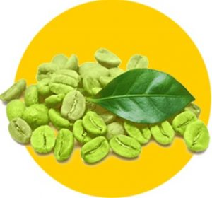 Zelené kávové zrná