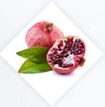 Extrakt z granátového jablka